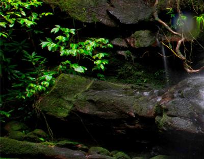 Het Kangen Water apparaat